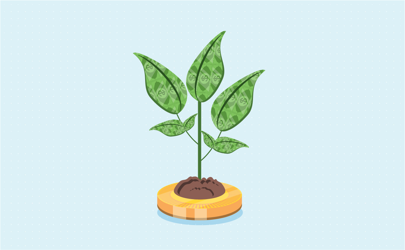 Coin growing money plant.