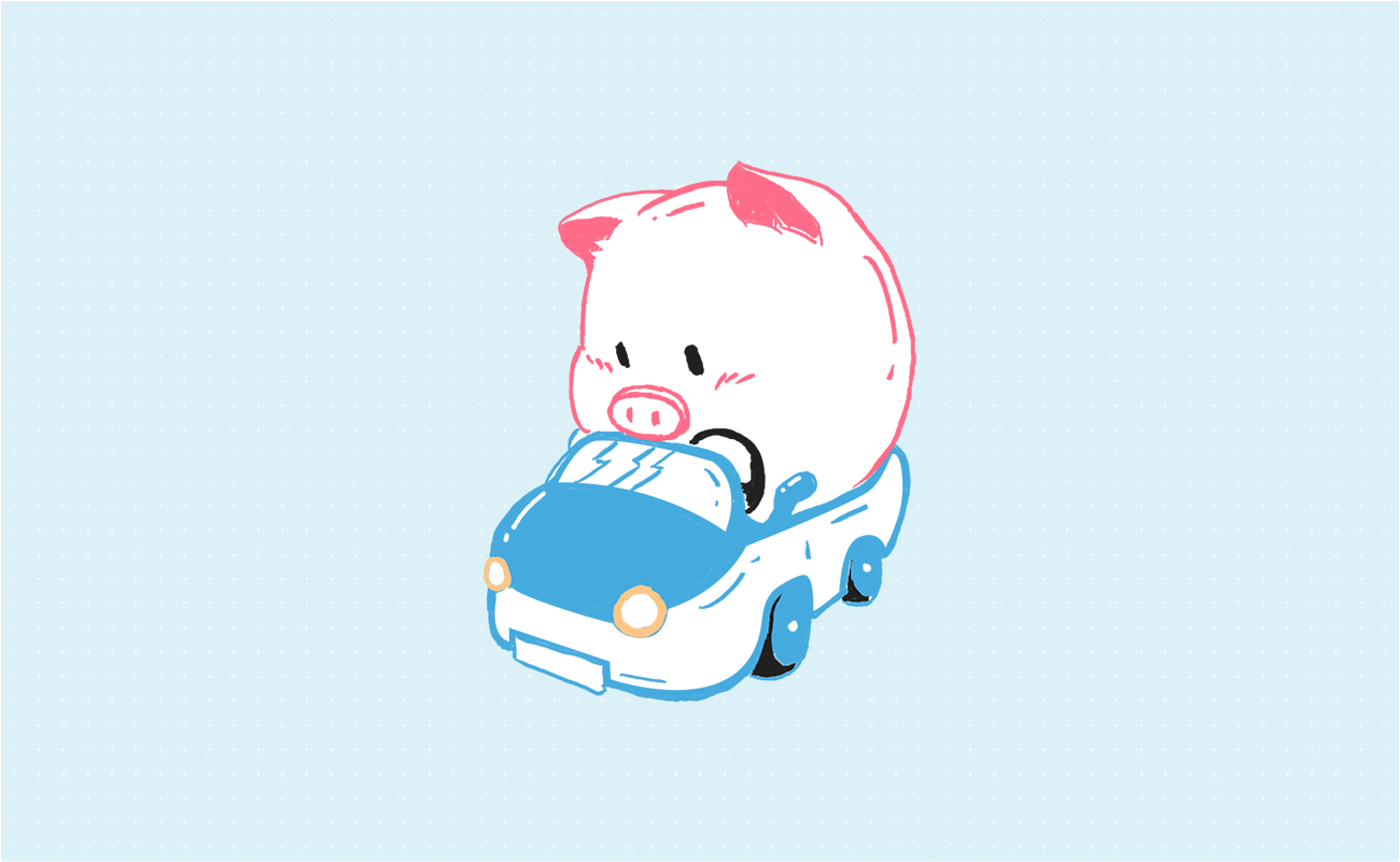 Pigly in a car driving.
