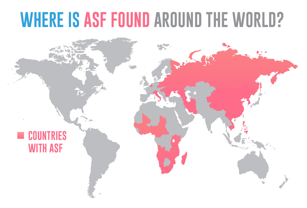 Where is ASF found around the world?